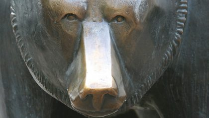 Bear Market Survival Tips from a Value Manager