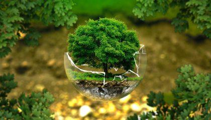 For Alpha, ESG Isn't Enough